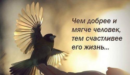 При помощи силы разума и мощи подсознания мы многое можем создать в этой жизни