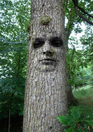 Чудодейственные деревья