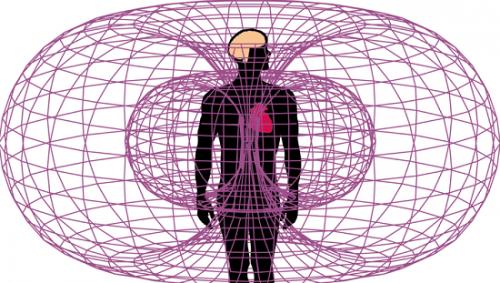 Энерго информационное поле формообразующие поля