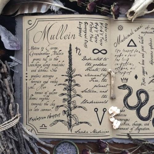 Магия типы и разновидности