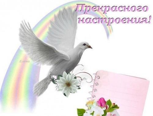 Мы рождены для того чтобы быть счастливыми