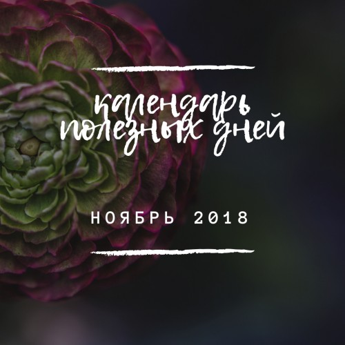 Календарь полезных дней Ноябрь 2018